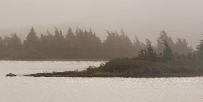foggy-lake-bit-of-sun-butterpot-park-xbal-warm-closer-fix-0106-copy
