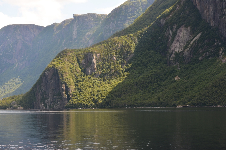southern shore Western Brook pond trees 9571.jpg