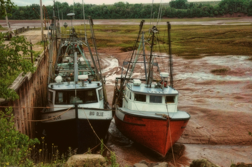 Low Tide Fundy Fishing Boats improved .jpg