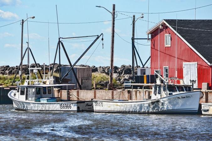 Miminegash Harbour Lobster boats  Topaz neutralizer 0227.jpg