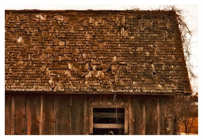 roof-wood-shakes-on1