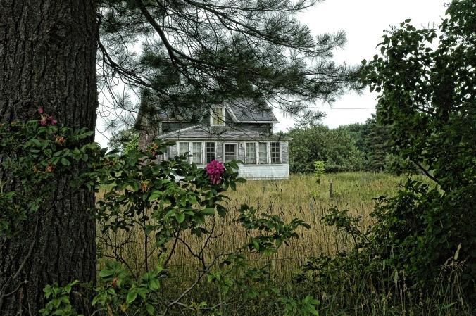 Grandpa put on porch on the old homestead.jpg